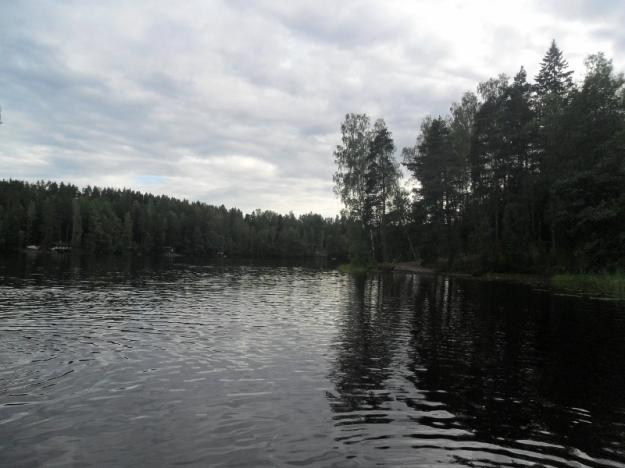 SAM_4358 (800x600)