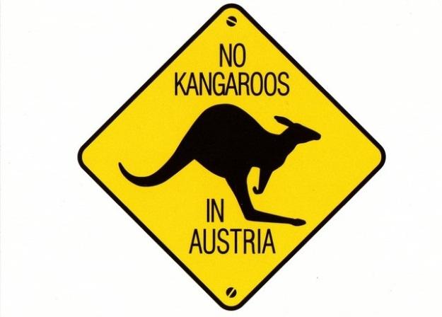 No kangaroos